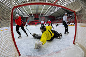 Ice Hockey Players Scoring the Goal