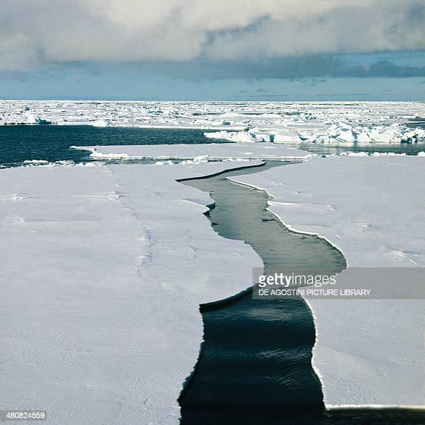 Ice pack Ross Sea Antarctica