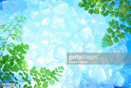 Ice surrounded by green leaves