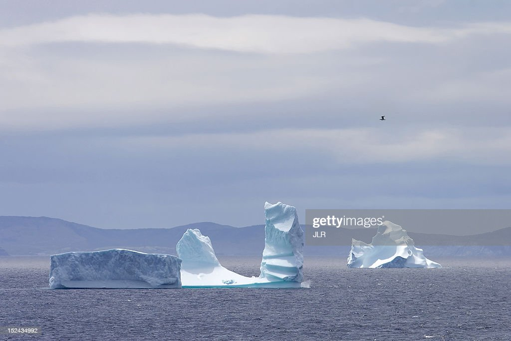 Iceberg alley : Stock Photo