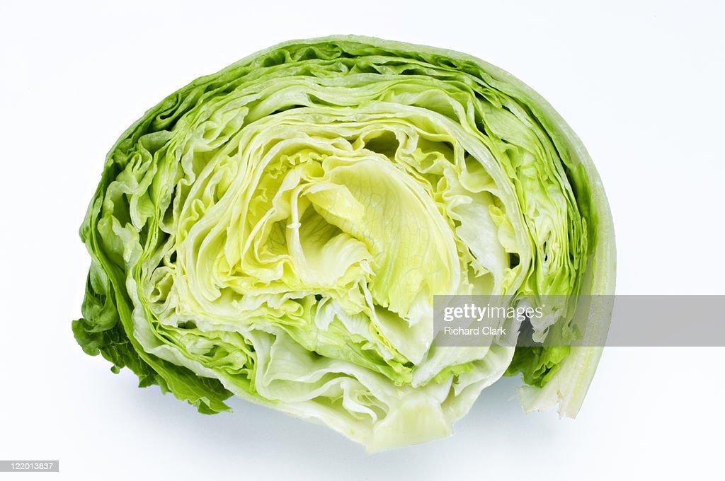 Iceberg lettuce : Stock Photo