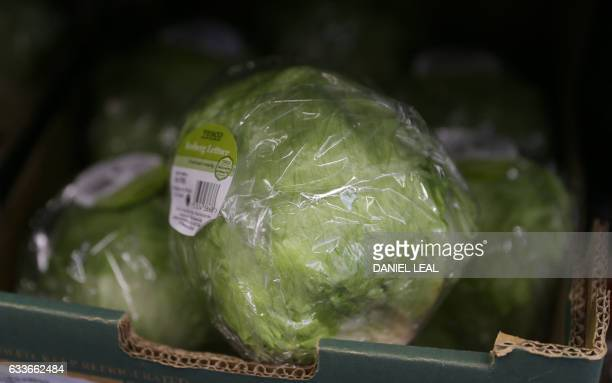 Iceberg lettuces are pictured for sale in a supermarket in central London on February 3 2017 British supermarket giants Tesco and Morrisons said they...