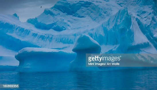 Icebergs, Antarctica : Stock Photo