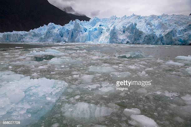 Icebergs In Laguna San Rafael In Front Of San Rafael Glacier Laguna San Rafael National Park Aysen Region Chile
