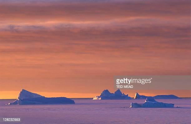 Icebergs in sea ice, Antarctica