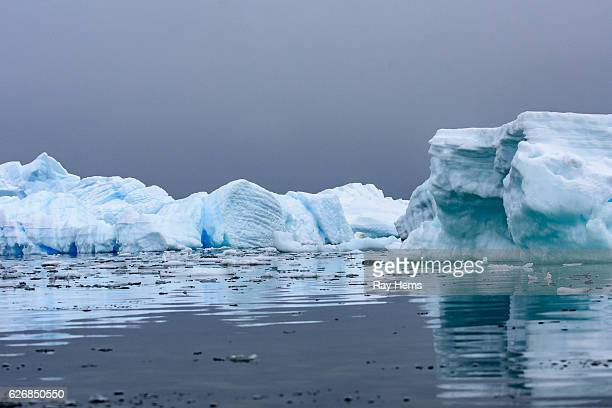 Icebergs with reflections in Antarctica