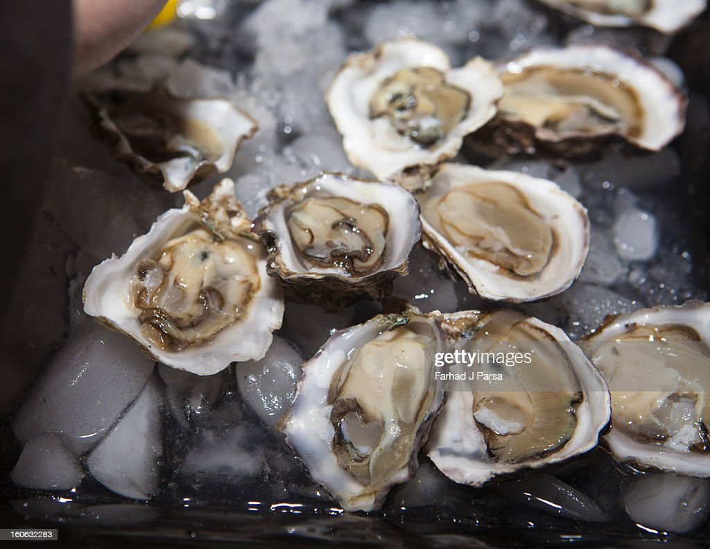 Iced oyster appetizers are served at a party. : Stock Photo