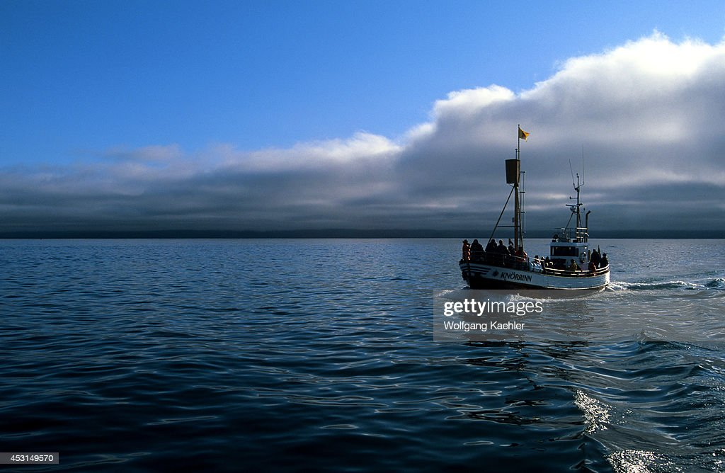 Iceland HUSAVIK Skjalfandi Bay Whale Watching Tour
