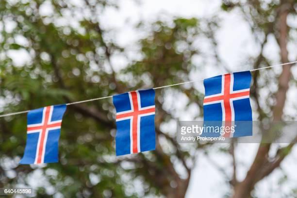 Iceland National Flag Garland