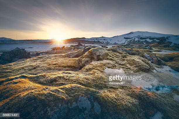 Iceland, Sudurland, coast in the morning