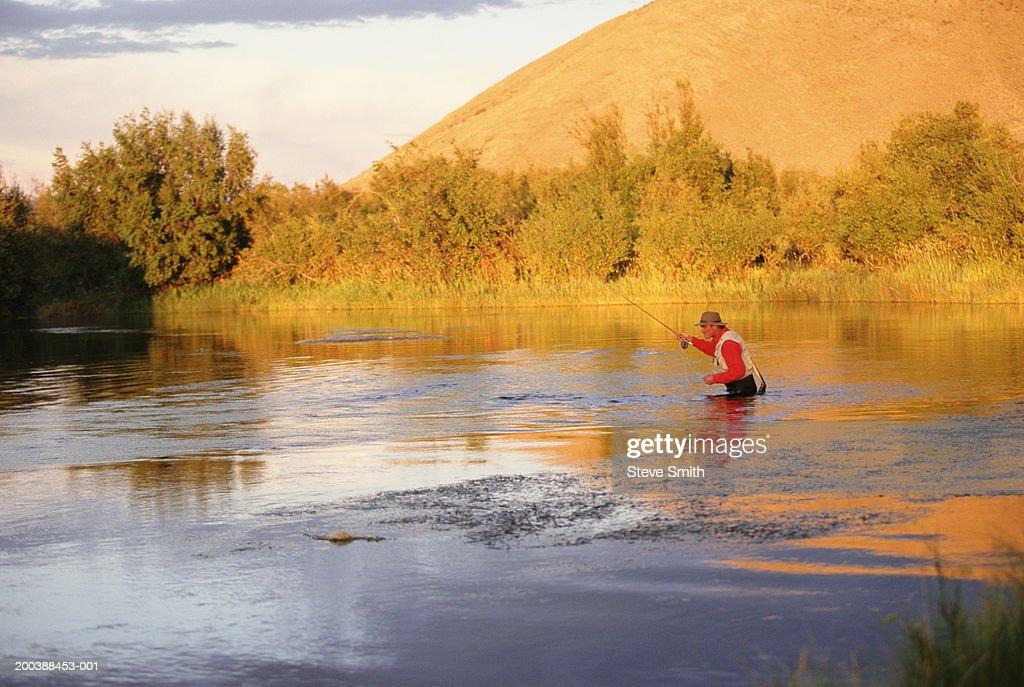 Usa idaho sun valley silver creek man fly fishing dusk for Silver creek idaho fishing