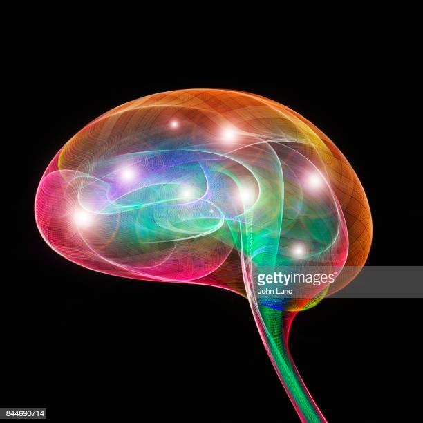 Ideas In The Brain