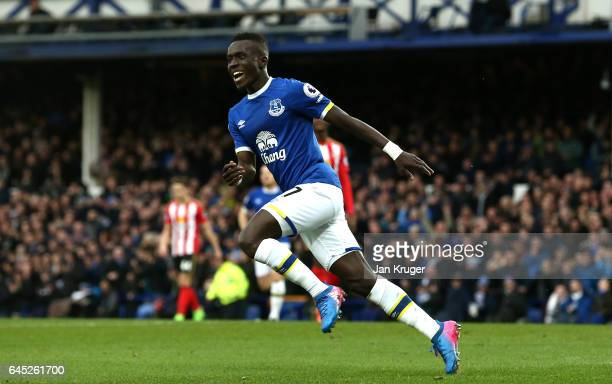 Idrissa Gueye of Everton celebrates scoring his sides first goal during the Premier League match between Everton and Sunderland at Goodison Park on...
