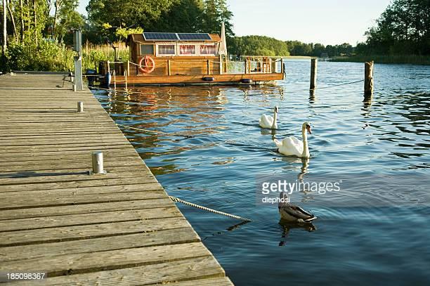 Idylle sur le lac