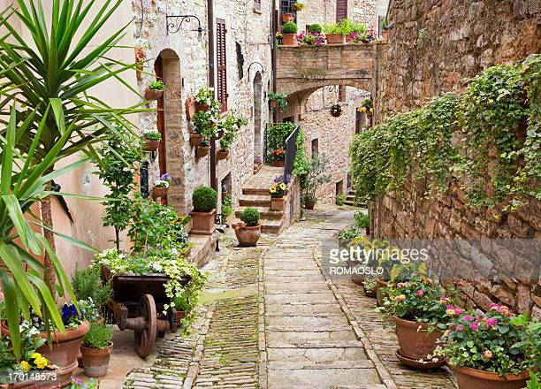 Idyllic alley with potted plants in Spello, Umbria Italy