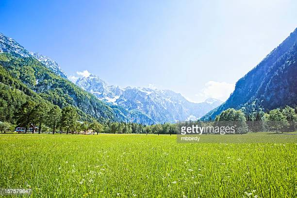 Idyllic Alps valley Logarska dolina, Slovenia