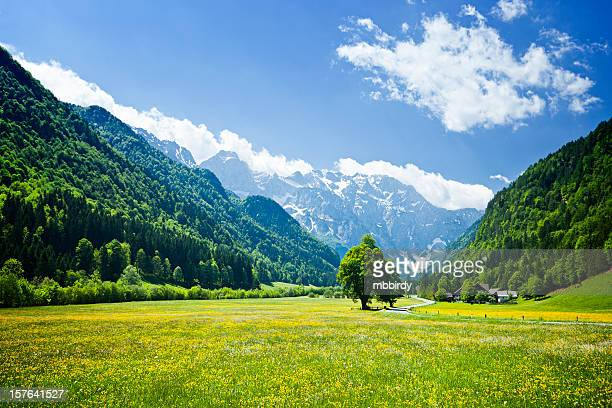 Alpes vallée idyllique