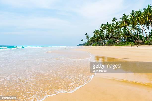 Idyllic beach scene, Sri Lanka