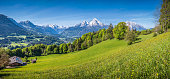 Idyllic landscape in the Alps with fresh green meadows, blooming flowers, farmhouses and snowcapped mountain tops in the background, Nationalpark Berchtesgadener Land, Bavaria, Germany