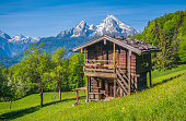 Panoramic view of idyllic landscape in the Alps with a traditional mountain lodge in between fresh green blooming fields and fruit trees in springtime