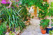 Mediterranean house with beautiful flower pots and potted plants garden