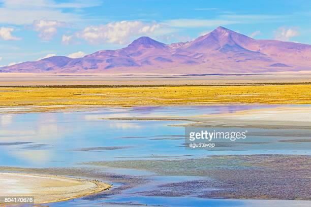 Idyllische Salar de Tara – blaue Salzsee und Salz flach, Vulkane und Atacama-Wüste Altiplano, vulkanische Landschaft Panorama – San Pedro de Atacama, Chile, Bolivien und Argentinien Grenze