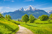 Idyllic landscape with hiking trail in the Alps with fresh green mountain pastures and snow-capped mountain tops in the background in summer.