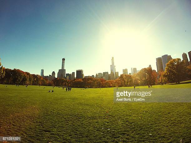 Idyllic Shot Of Central Park By Skyline Against Clear Sky