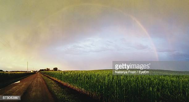 Idyllic Shot Of Dirt Road By Green Field Against Sky With Rainbow