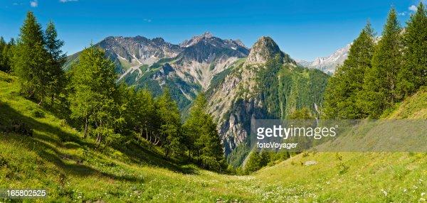 Idyllic summer Alpine meadow mountain peaks panorama Italy