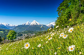 Panoramic view of beautiful landscape in the Bavarian Alps with famous Watzmann mountain in the background in springtime, Nationalpark Berchtesgadener Land, Bavaria, Germany.
