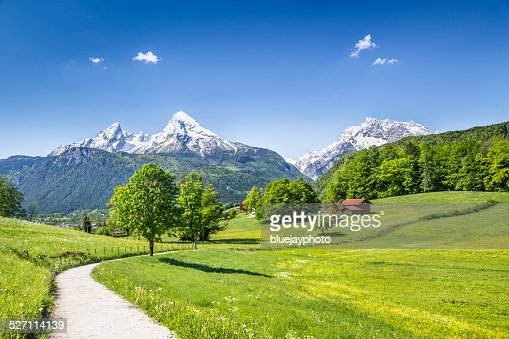 Idyllic summer landscape in the Alps : Stock Photo