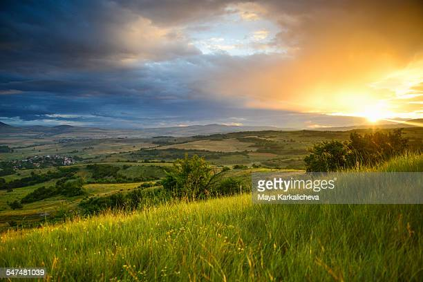 Idyllic summer sunrise