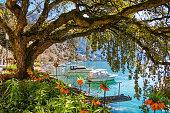 Flowers, mountains and Lake Geneva (Leman) in Montreux, Switzerland