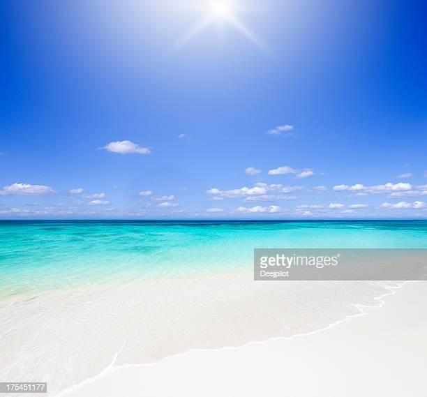 Idyllique plage tropicale avec soleil rétro-éclairé