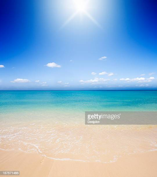 Idyllic Tropical Beach Backlit with Sunlight