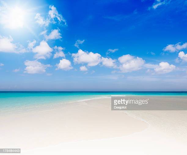 Idyllic Tropical Beach with Sunlight
