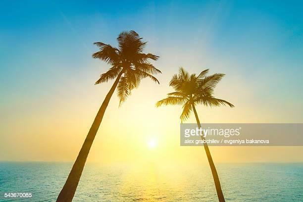 Idyllic tropical heaven