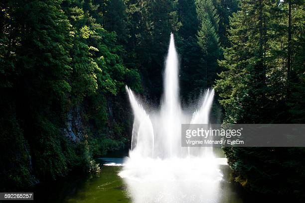 Idyllic View Of Fountain Amidst Trees At Butchart Gardens
