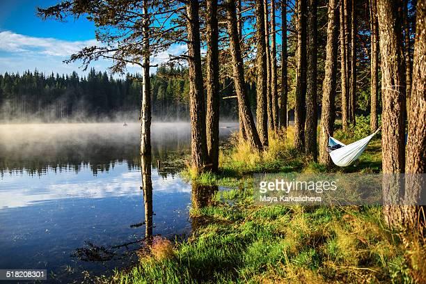 Idyllic view of hammock by mountain lake