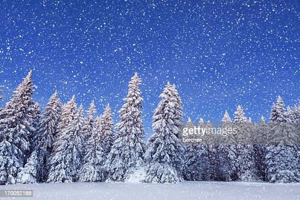 Idilliaco giorno d'inverno