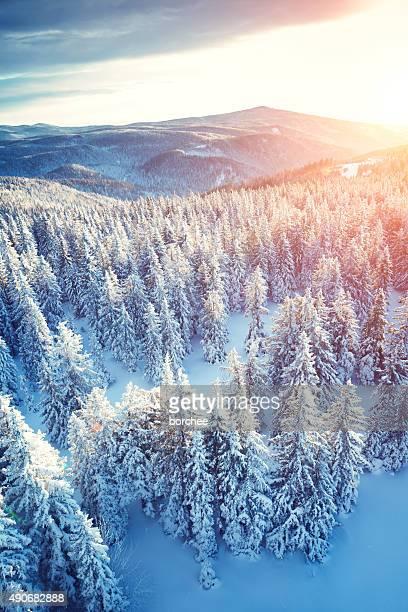 Idyllische Winter-Sonnenaufgang