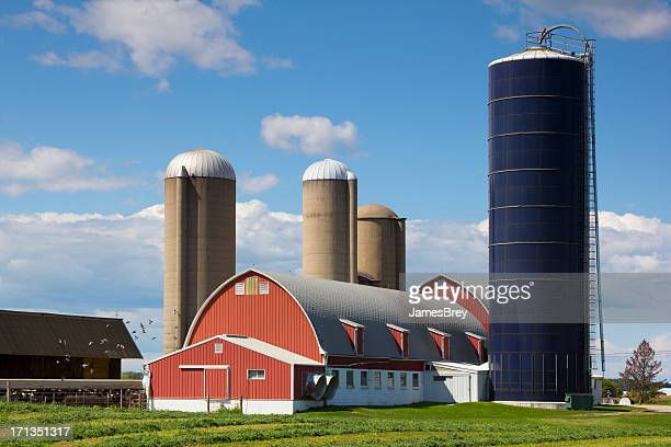 Idyllic Wisconsin Farm, Red Barn, Silos