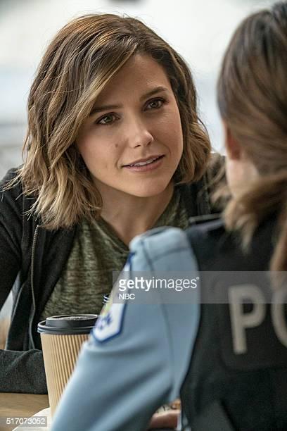 D 'If We Were Normal' Episode 319 Pictured Sophia Bush as Erin Lindsay