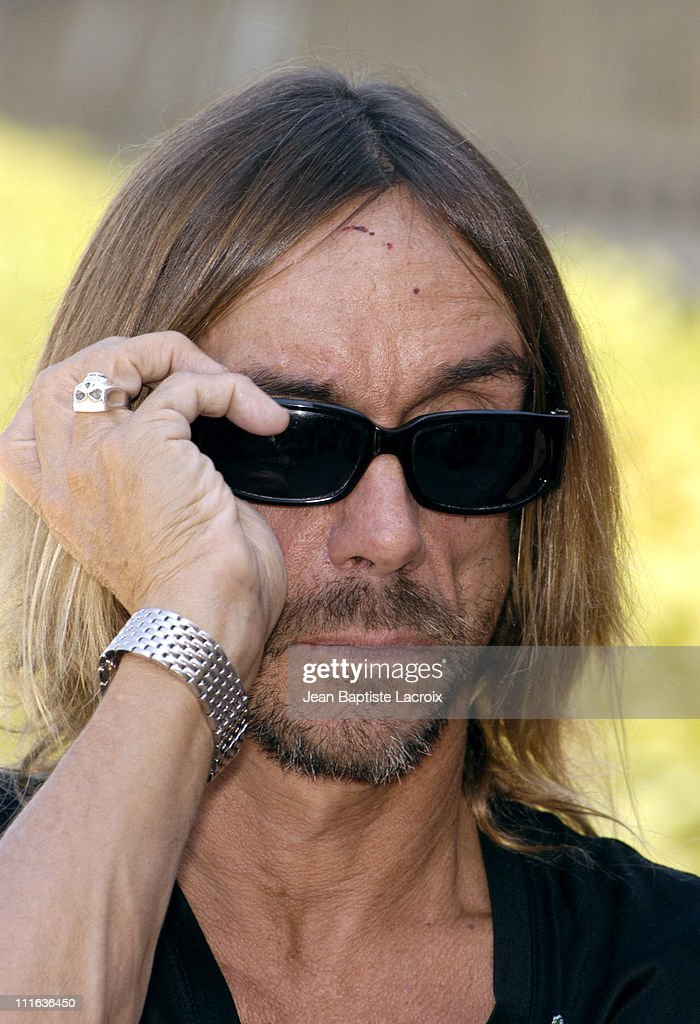 Iggy Pop during Iggy Pop Receiving the 'Arts and Letters Medal' - Photocall - Paris at Ministry of Culture in Paris, France.