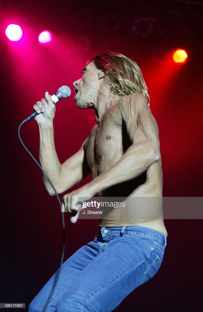 Iggy Pop of The Stooges during Voodoo Music Experience 2003 - Day Two at City Park in New Orleans, Louisiana, United States.