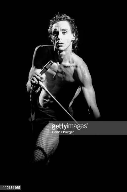 Iggy Pop performs at the Music Machine in London February 1978