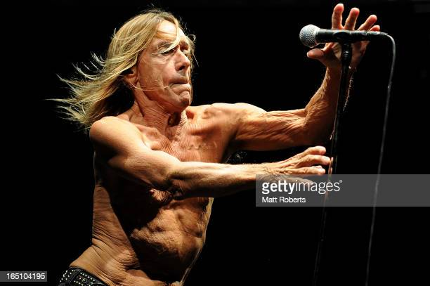 Iggy Pop performs on stage with his band Iggy and the Stooges at Bluesfest Byron Bay 2013 Day 3 on March 30 2013 in Byron Bay Australia