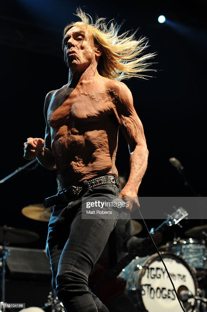<a gi-track='captionPersonalityLinkClicked' href=/galleries/search?phrase=Iggy+Pop&family=editorial&specificpeople=171445 ng-click='$event.stopPropagation()'>Iggy Pop</a> performs on stage with his band Iggy and the Stooges at Bluesfest Byron Bay 2013 - Day 3 on March 30, 2013 in Byron Bay, Australia.