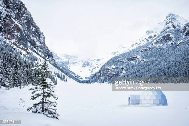 Igloo in snowy field near remote mountains, Lake Louise, Alberta, Canada